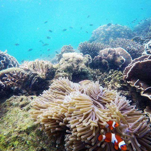 mitos di pulau gili ketapang